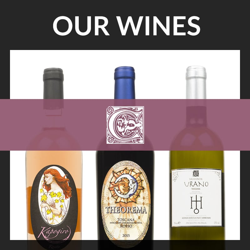 Discover the Enzo Carmignani wines